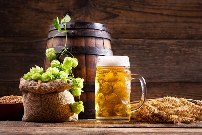 Mug of beer with green hops, wheat ears, grains and wooden barrel on wooden background
