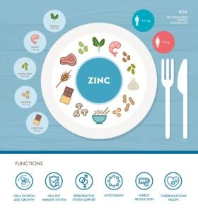 zinc food sources and functions